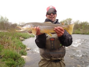 Chris Samson brown trout